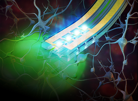 Cellular-scale, injectable electronics