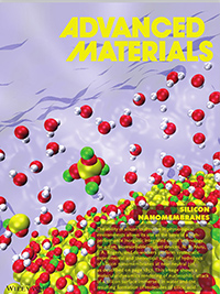 """Mechanisms for Hydrolysis of Silicon Nanomembranes as Used in Bioresorbable Electronics"""